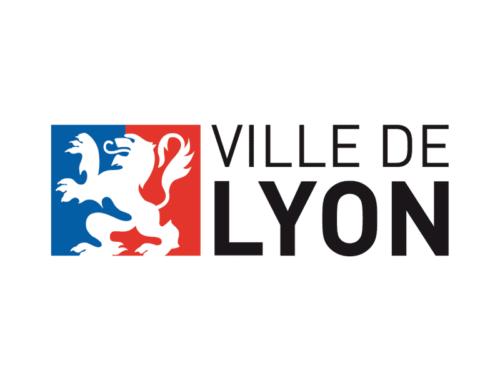 Festival of lights of Lyon 2017